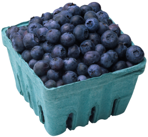 Blueberries KARIMDAVID.COM