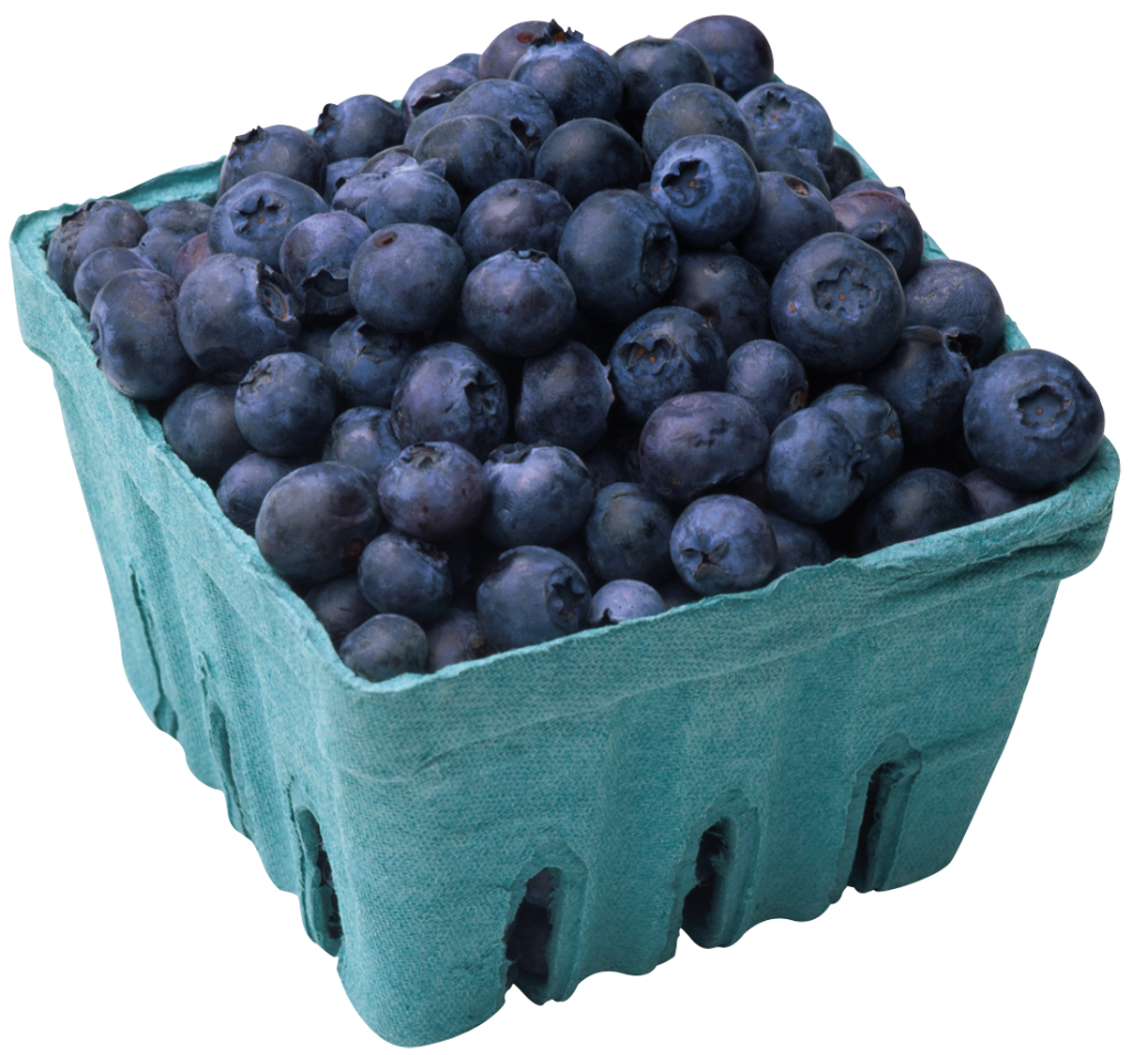 5 Proven Benefits Of Blueberries