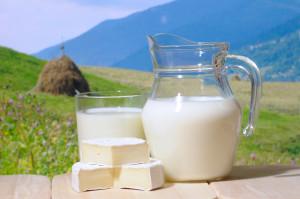 Dairy KARIMDAVID.COM